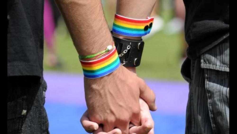gay or homosexual