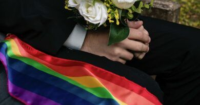 """24 estados han aprobado el matrimonio igualitario tras el """"sí"""" de Sonora y Querétaro"""