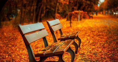 Te informamos la hora del equinoccio de otoño