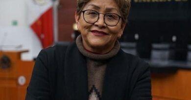 Nombran a Martha Guerrero delegada de  Morena en EdoMéx