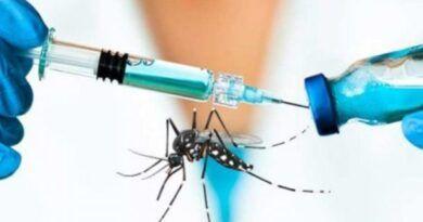 Vacuna contra fiebre Chikungunya en humanos revela alta efectividad: IPN