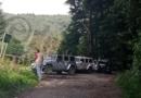 Buscan a lobo salvaje que escapó de parque en Tenango del Valle