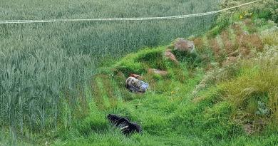 A balazos matan a joven y abandonan su cuerpo en Tenango del Valle