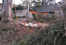 Hombre muere tras caerle tronco de un árbol que podaba; en Tenancingo