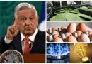 Sube precio del nopal, huevo, luz y gas; AMLO dice que es pasajero